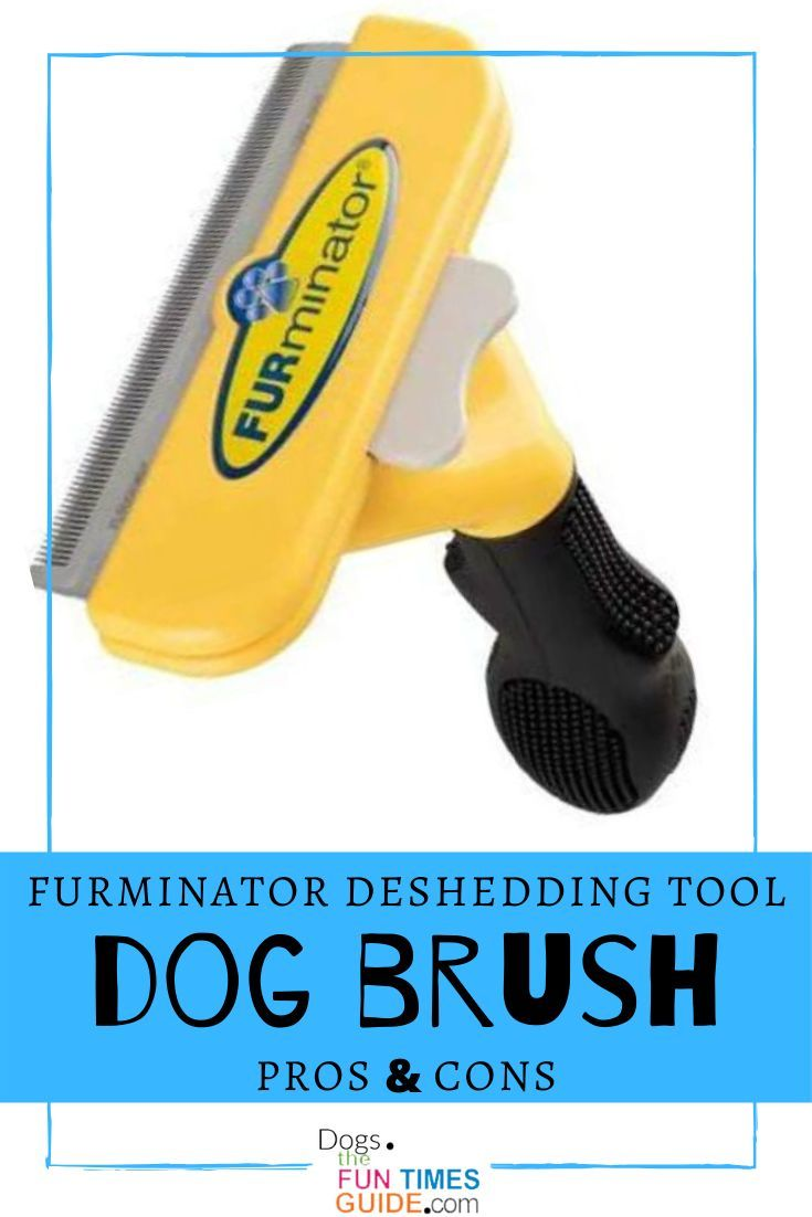 Looking For The Best Pet Brush See Why So Many Dog Owners Groomers Think The Furminator Deshedding Tool Is The Best Dog Brush For Shedding In 2020 Dog Brushing Furminator