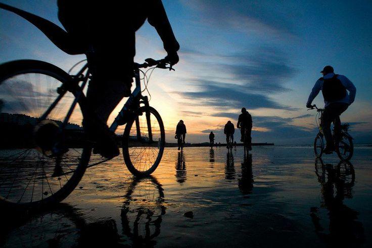 La #felicità è una direzione, non un luogo.  Sydney J. Harris  #citazione #viaggio #bici