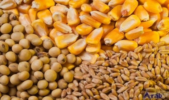 Chicago agricultural commodities settle mixed