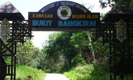Wisata Hutan Hujan Tropis Bukit Bangkirai Balikpapan   firmansyah Blog