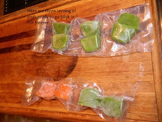 Packing homemade baby food for travels