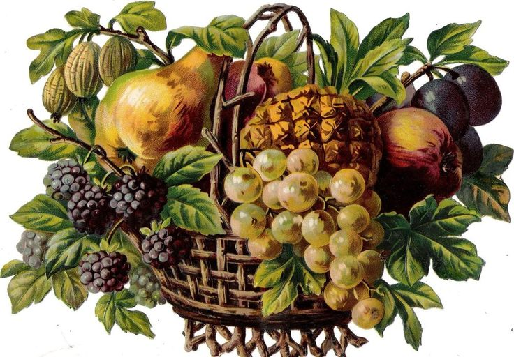 Oblaten Glanzbild scrap die cut chromo Obst Korb  XL 24cm fruit Früchte basket