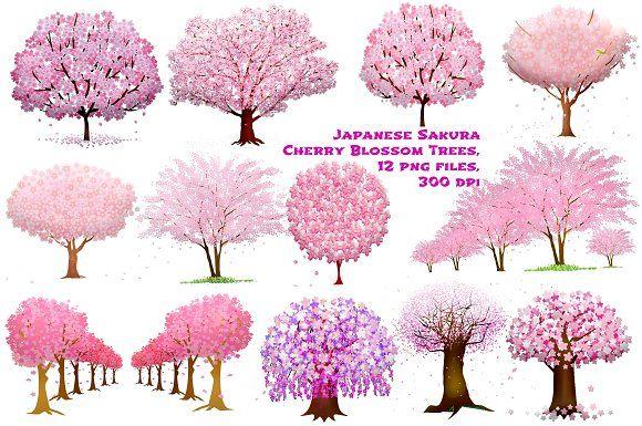 Cherry Blossom Sakura Trees By Frankiesdaughtersdesign On Creativemarket Cherry Blossom Tree Tattoo Cherry Blossom Drawing Cherry Blossom Painting