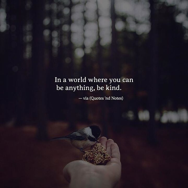 In a world where you can be anything be kind. via (http://ift.tt/2q17WWu)