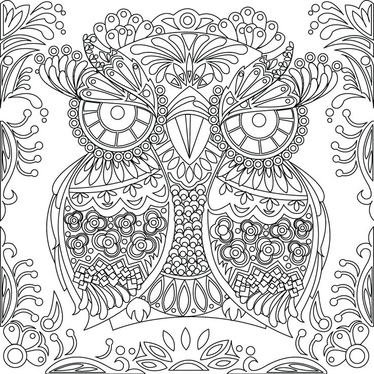 400 best Buhos 02 images on Pinterest | Libros para colorear, Búhos ...