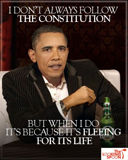 OBAMA CARTOONS: Conservative Political Humor: Obama don't always follow The Constitution!