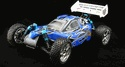 2.4Ghz Version Tornado EPX PRO 1/10 Scale Brushless Version Buggy Blue.X Hobby Store has the perfect RC Cars for you! Visit our site today for more info about our RC models. http://www.xhobbystore.com/