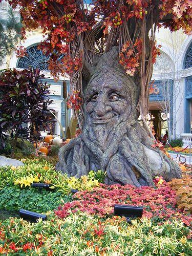 2009 Fall Las Vegas