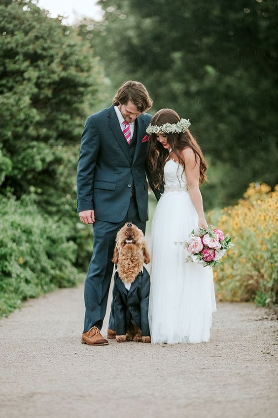 This handsome Goldendoodle steals the shot. Moira Photography. #pets #weddings