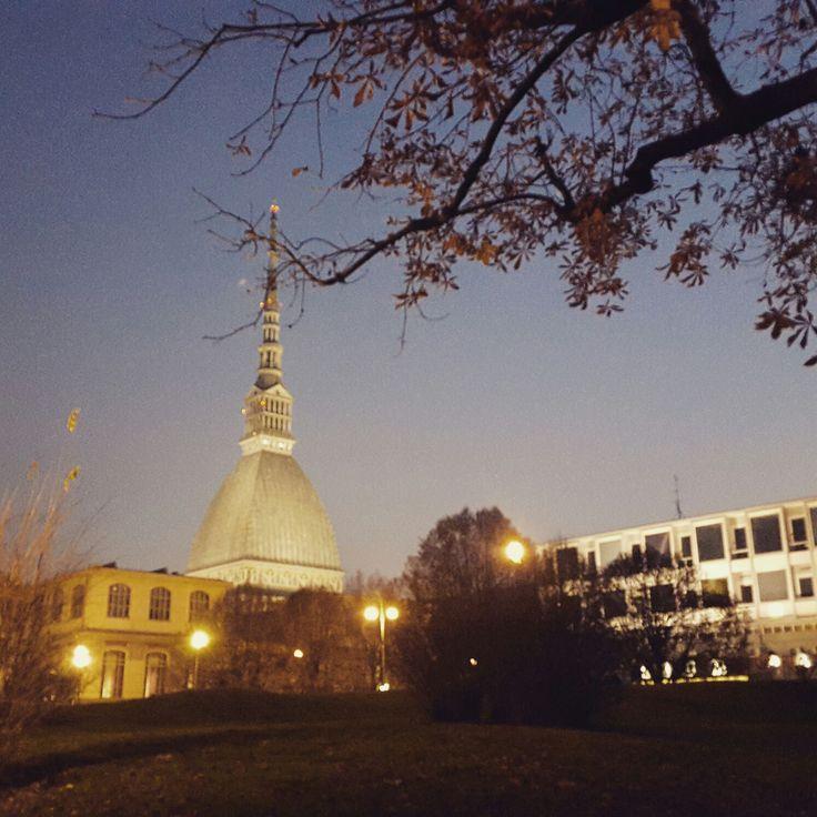 Torino: vista della Mole Antonelliana di sera http://www ...