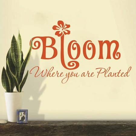 Bloom Where You Are Planted Wall Quote Decal Home Sticker Inspirational  Flower Quote Love Living Room Removable Mural Vinyl Decal, 41j