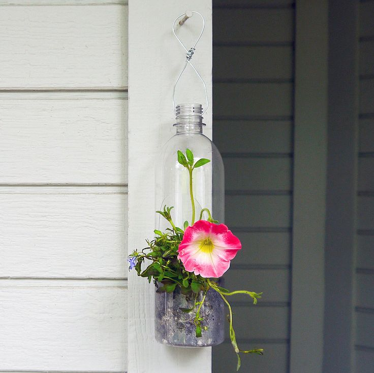 Turn a Plastic Bottle Into a Hanging Planter