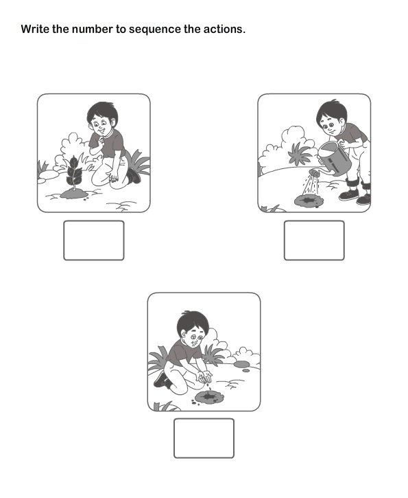 Picture Sequence Worksheet 19