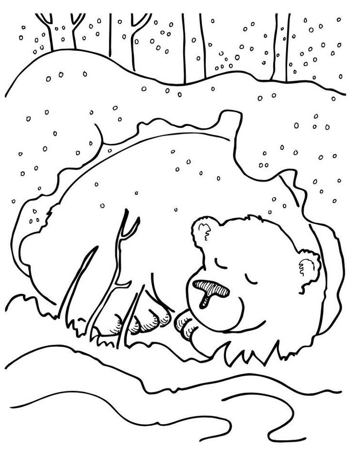 hibernating bear coloring pages. The following is our Bear ...