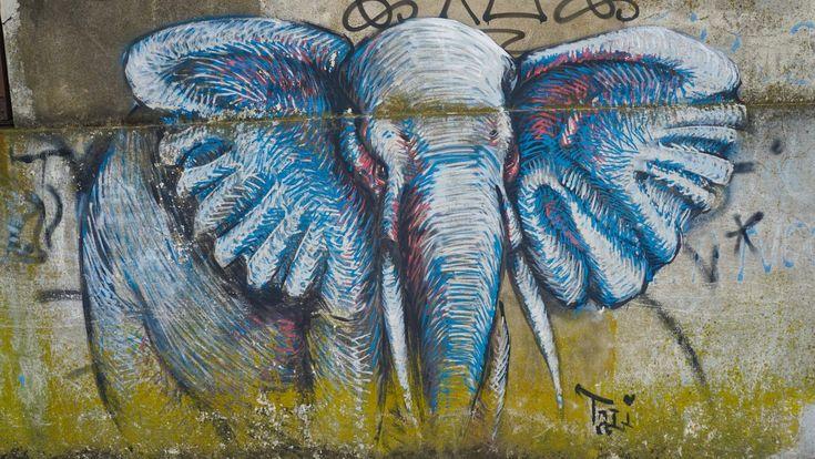 graffitimundo buenos aires street art argentina tours