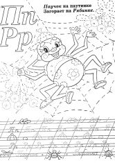 Раскраска Паук лежит на паутине
