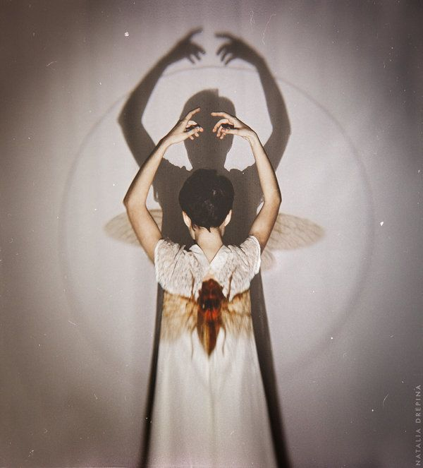 The Bee by NataliaDrepina.deviantart.com on @deviantART