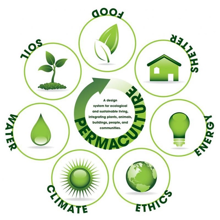 """Permaculture is a branch of ecological design, ecological engineering, & environmental design which develops sustainable architecture & self-maintained horticultural systems modeled from natural ecosystems."" Discover more via http://en.wikipedia.org/wiki/Permaculture"