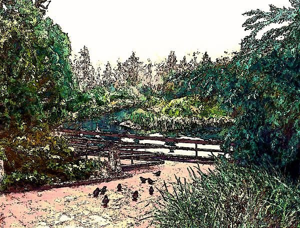 Pigeons at Sechelt Marsh is a modified photograph of the acrylic on canvas painting by Stanley Funk.  Details:  http://stanley-funk.artistwebsites.com/featured/pigeons-at-sechelt-marsh-stanley-funk.html