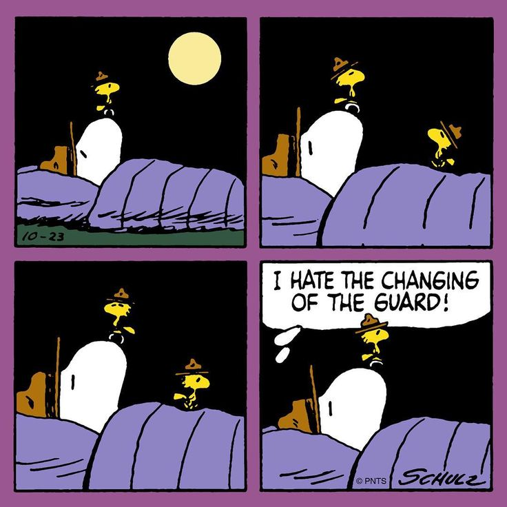 """42.8k Likes, 117 Comments - Snoopy And The Peanuts Gang (@snoopygrams) on Instagram: """"Sleepovers with Snoopy and Woodstock """""""