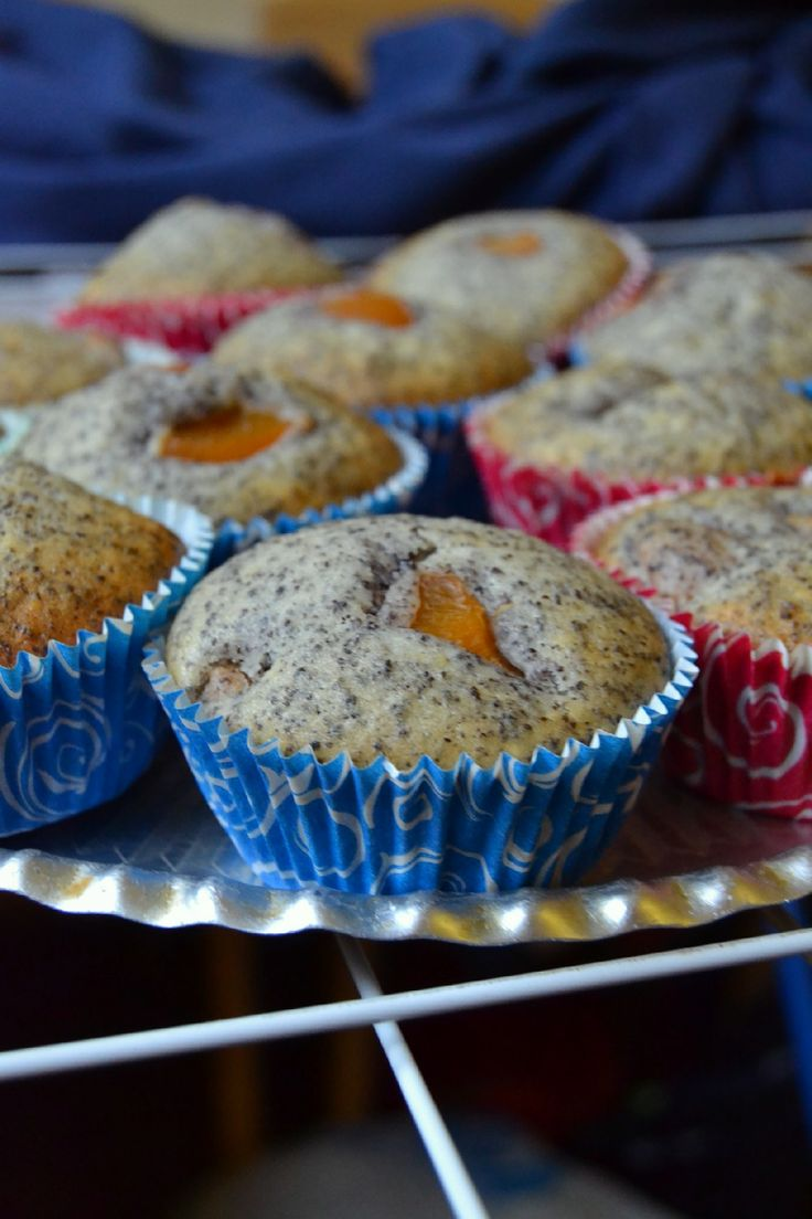 BLOG BY ANDREA: Makové Muffiny s meruňkami