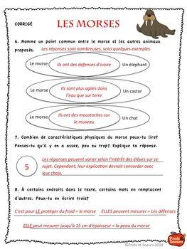 STRATéGIES DE LECTURE ET COMPRéHENSION DE TEXTE / FRENCH READING STRATEGIES - TeachersPayTeachers.com