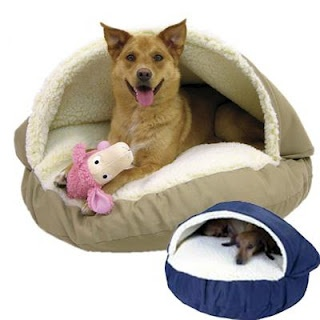 To any dog, no matter what its age or size may be, a home is a home when there is a cozy bed waiting for them in it. It is no wonder why beds are considered dog supplies, since your pet would use and look for it every day. These beds are available in nearby shops, and if ever you would want to look for something different or more personalized, you could also check some online. Read this blog for more info.