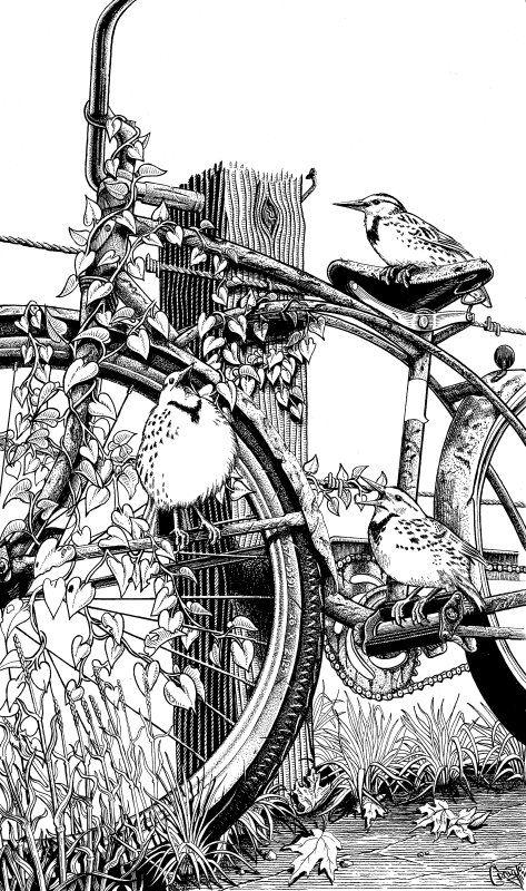 3 Little Birds by Craig McCudden/ Bleeding Finger Studio