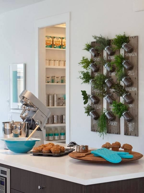 How neat is this indoor herb garden? We love it! This way you have fresh herbs for cooking year round.