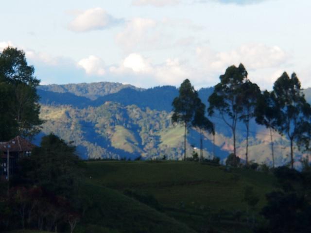 Salento y el valle del Cocora, en el eje cafetero colombiano, es uno de los lugares más bonitos del país.  P5272175 by Vagamundos.net/Carlos Olmo, via Flickr