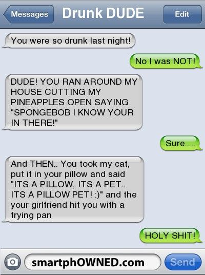 Drunk DUDEYou were so drunk last night! | No I was NOT! | DUDE! YOU RAN AROUND MY HOUSE CUTTING MY PINEAPPLES OPEN SAYING 'SPONGEBOB I KNOW YOUR IN THERE!' | sure..... | and THEN.. You took my cat, put it in your pillow and said 'ITS A PILLOW, ITS A PET.. ITS A PILLOW PET! :)' and the your girlfriend hit you with a frying pan | HOLY SHIT!