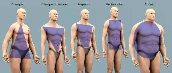 5 Tipos De Cuerpo Masculino