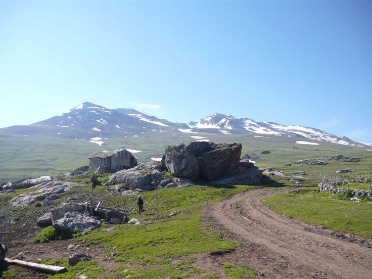 Karagöl Yaylasi   Dereli ilçesinin güney batisinda, Giresun-Ordu-Sivas  illerinin birlesme  noktasina yakin bir