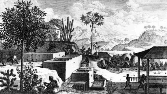 a history of the island of haiti Survey of the geology of haiti guide to the field excursions in haiti relation to the remainder of the island as a geologic history of.