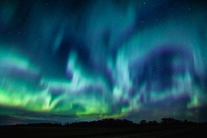 Woods and Water 2016 Al Hossain, Saskatoon, SK Photo location: Saskatoon