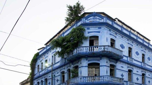 Edificios abandonados en Tampico, México se llenan con los árboles