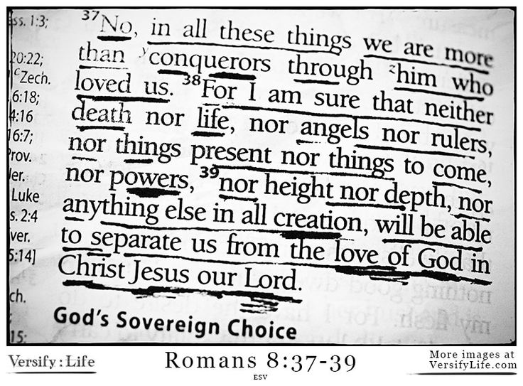 Romans 8 37 39 Bible Page – Articleblog info