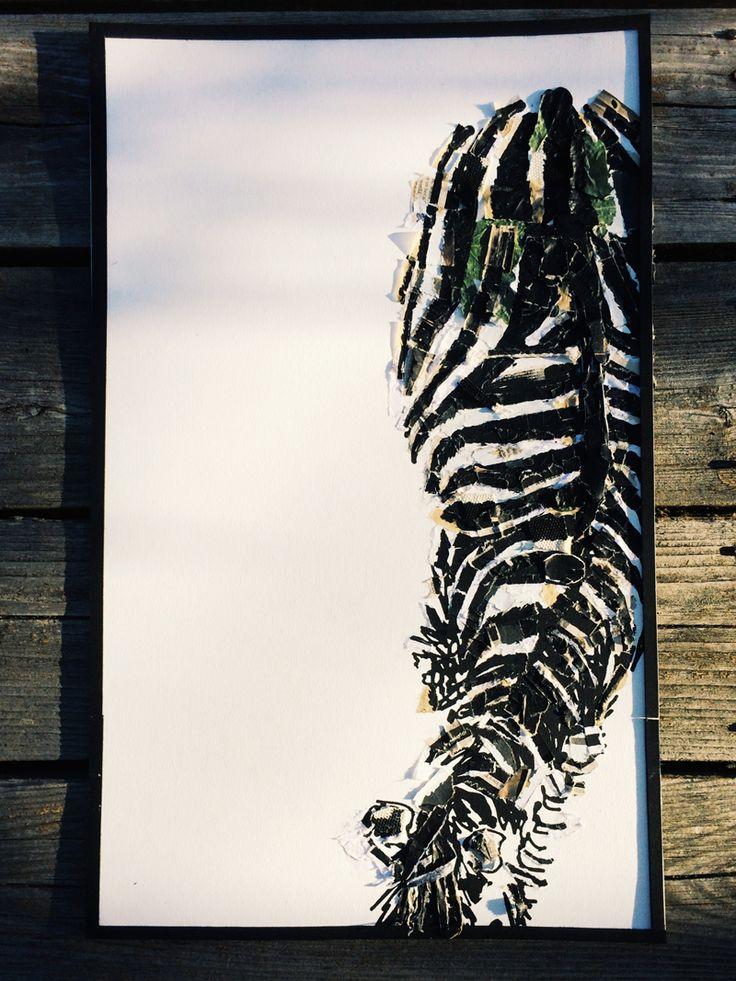 zebra silkscreen