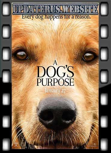 NONTON FILM STREAMING A DOGS PURPOSE (2017) SUBTITLE INDONESIA