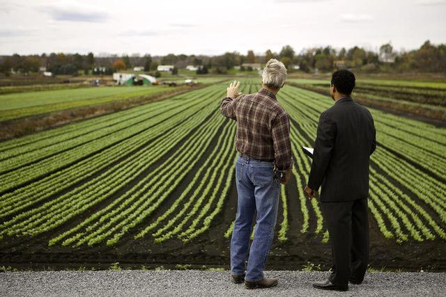 How to Write a Small Farm Business Plan | Business planning and ...