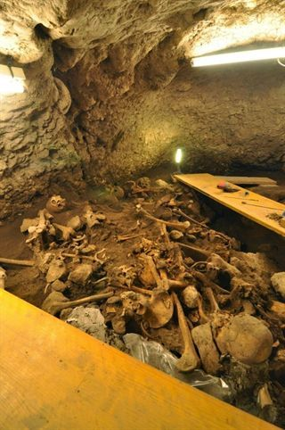 The Homo sapiens had Atapuerca genetic affinities with the Middle East and Germany. --- Los Homo sapiens de Atapuerca tenían afinidades genéticas con Oriente Próximo y Alemania