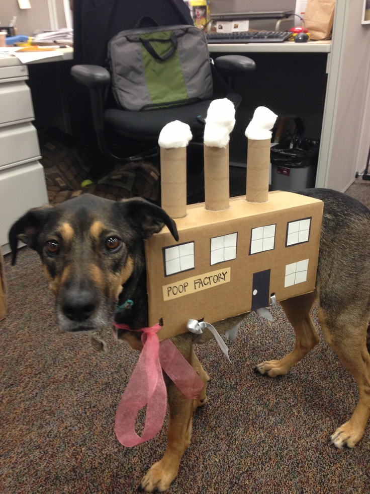 Trupanion dog Ellie's poop factory Halloween costume