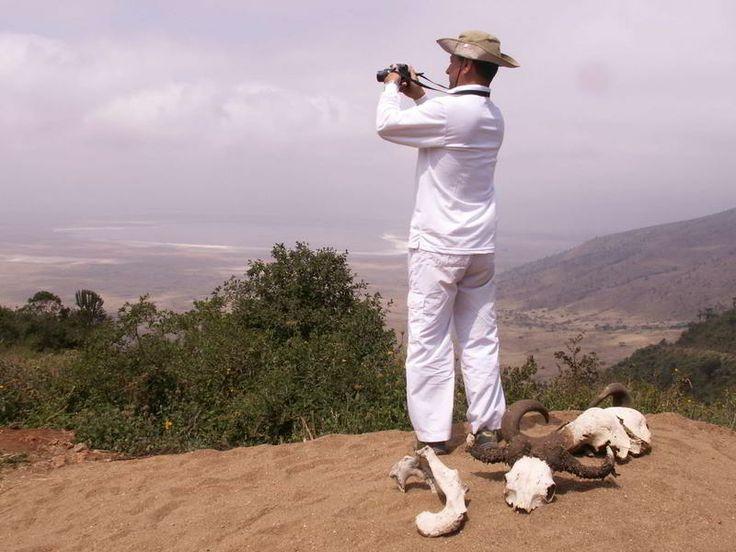 Safari in Kenya e Tanzania, Viaggi e Safari http://www.grandiorizzonti.it/destinazioni/tanzania