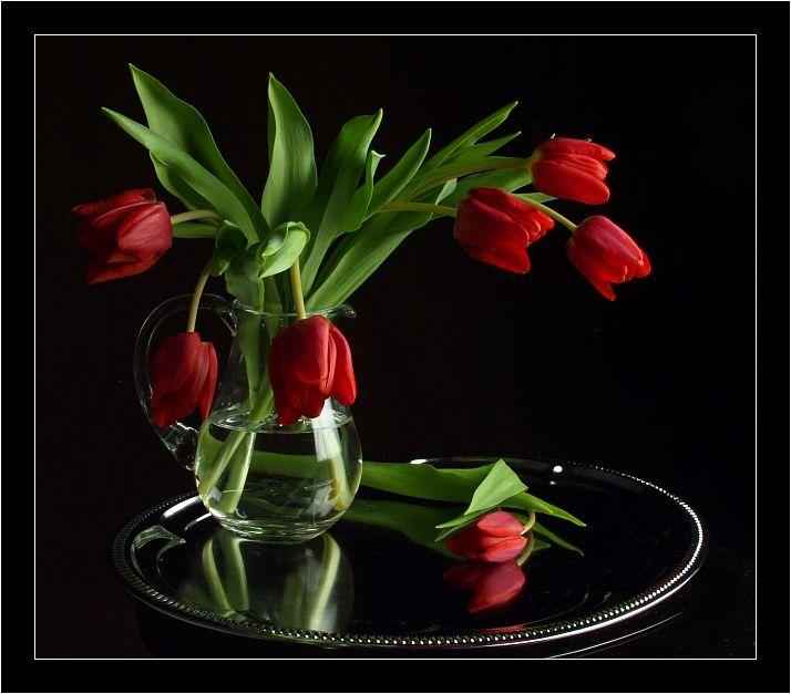 гиф с днем татьяны цветы