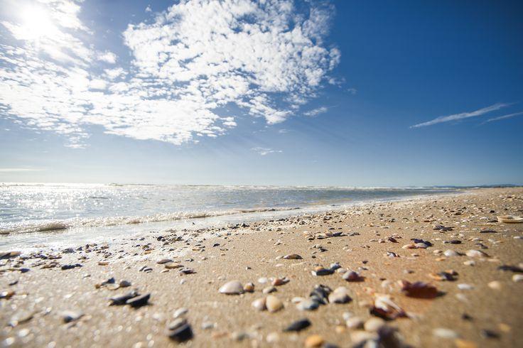 La spiaggia di Ravenna alle 8 del mattino. #Italy