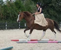 Amazones de cirque et chez Toulouse Lautrec - Equitation monte en amazone