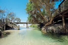 eli creek fraser island - Google Search AUSTRALIA