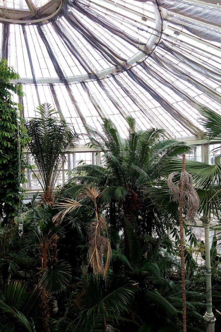 What to see in Copenhagen, Denmark?  Palm House, Botanic Garden