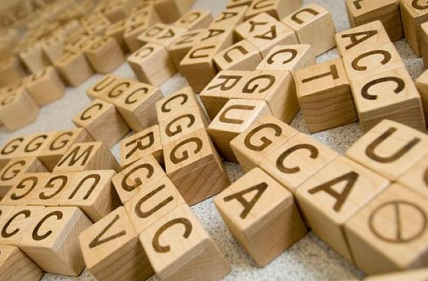 Is DNA Multilingual? When does a stop codon code for an amino acid instead?