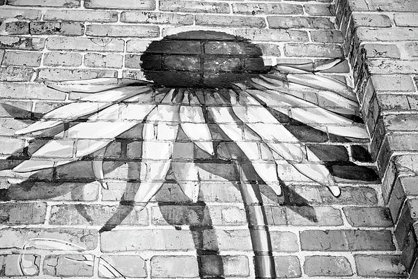 Image result for FLOWER MURAL BRICK WALL